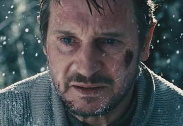 the grey -  Le territoire des loups - Liam Neeson