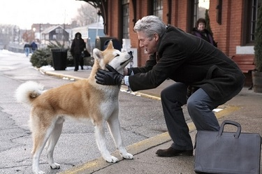 hatchi richard gere