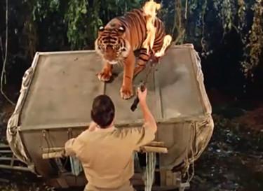 le tigre du bengale - fritz lang